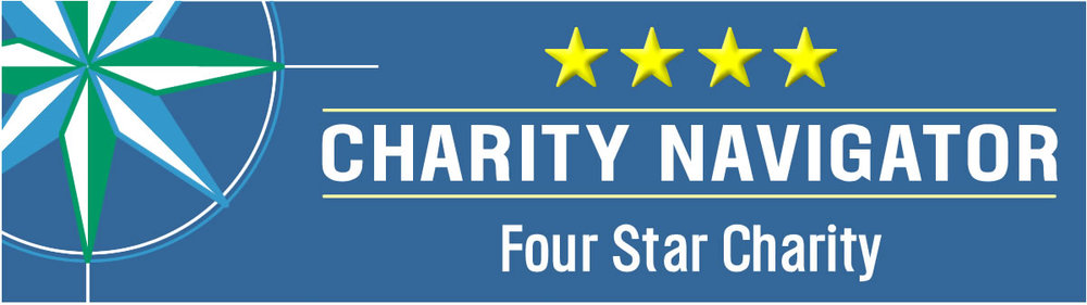 Library Foundation Earns Coveted 4-Star Rating From Charity Navigator