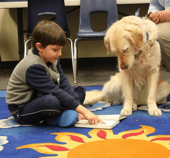 LFPL -GFG Boy and Dog